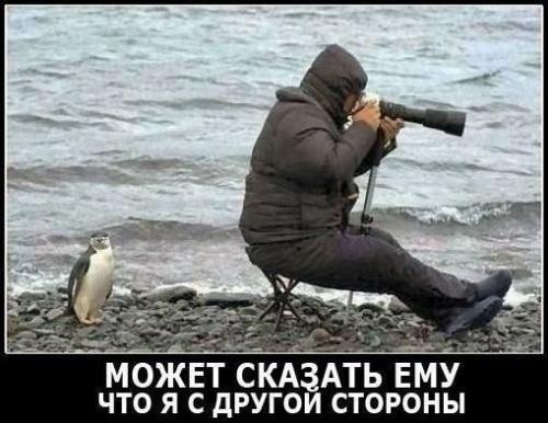 Больше, чем просто фотография (49 фото)