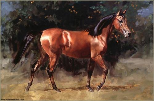 Работы художника William Whitaker (121 работ)