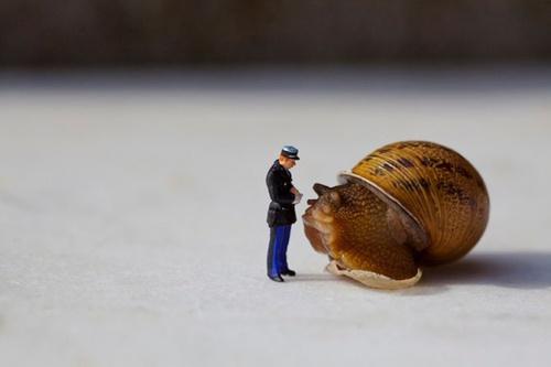 My Small Word by Frances Jean-Joseph Renucci (59 фото)
