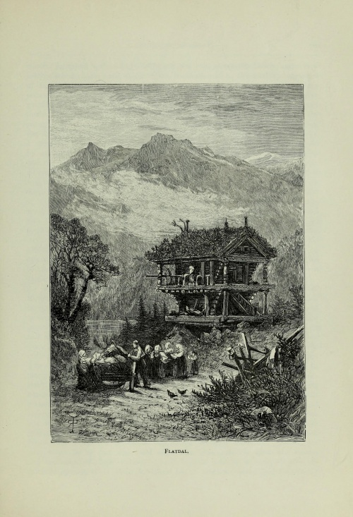 Norwegian pictures drawn with pen and pencil (1885) (133 работ)