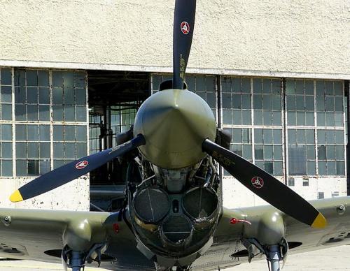 Американский истребитель Curtiss P-40 Warhawk (30 работ)