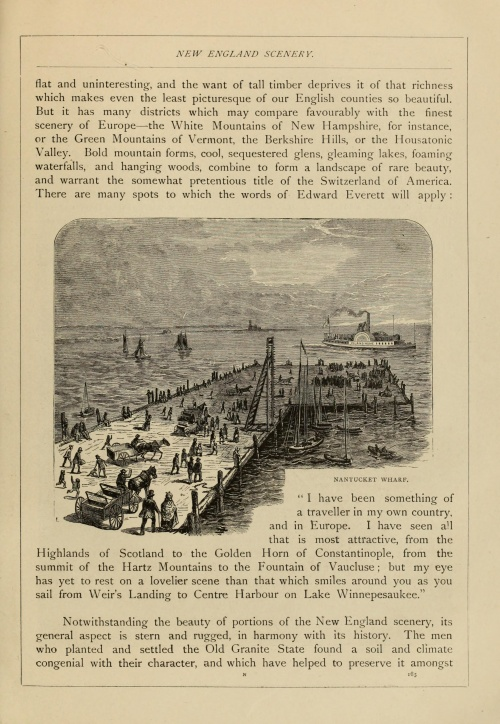 American pictures drawn with pen and pencil (1876) (178 работ)