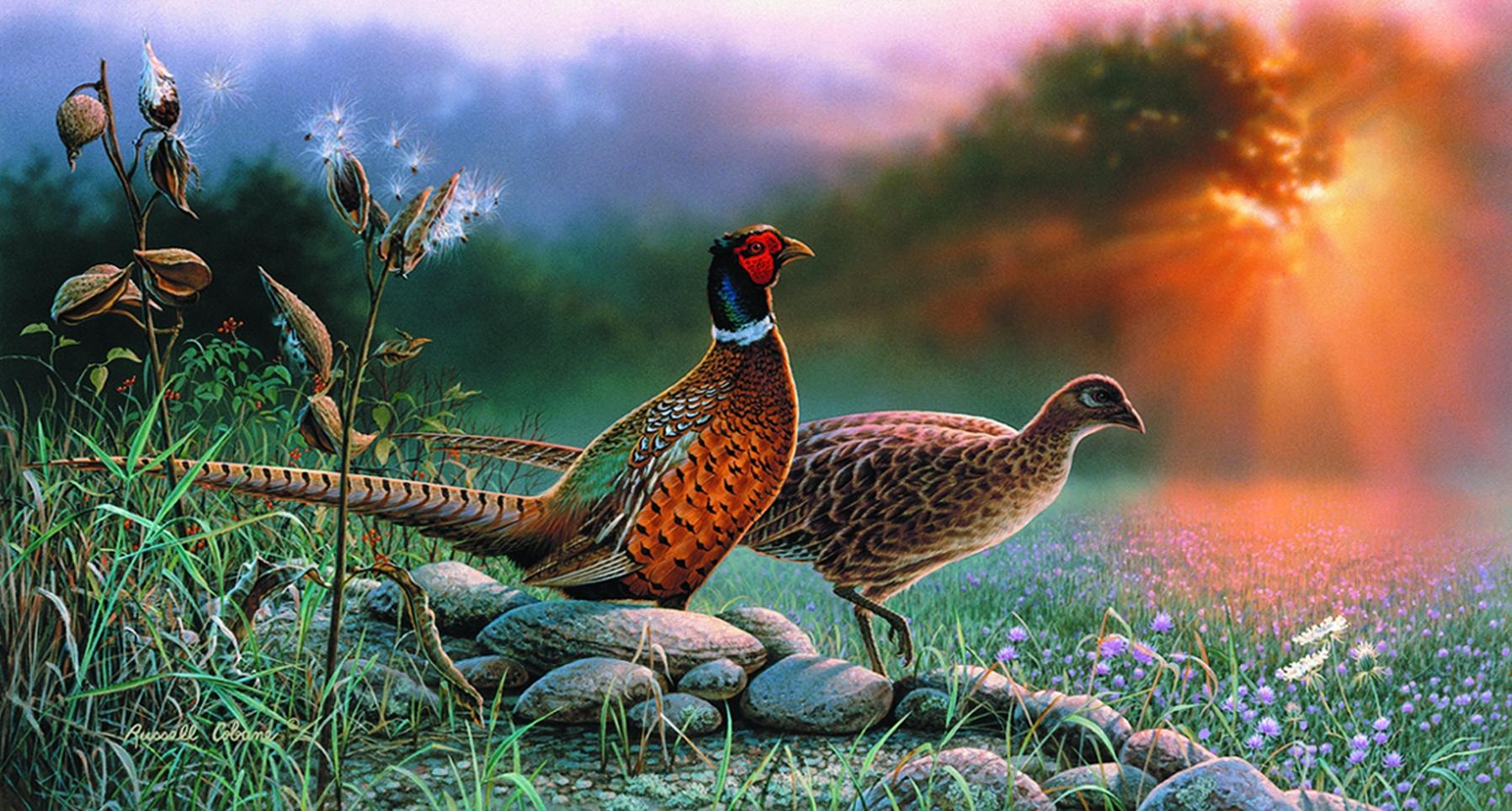 Фэнтези картинки фазаны жайлы ??гімелеген