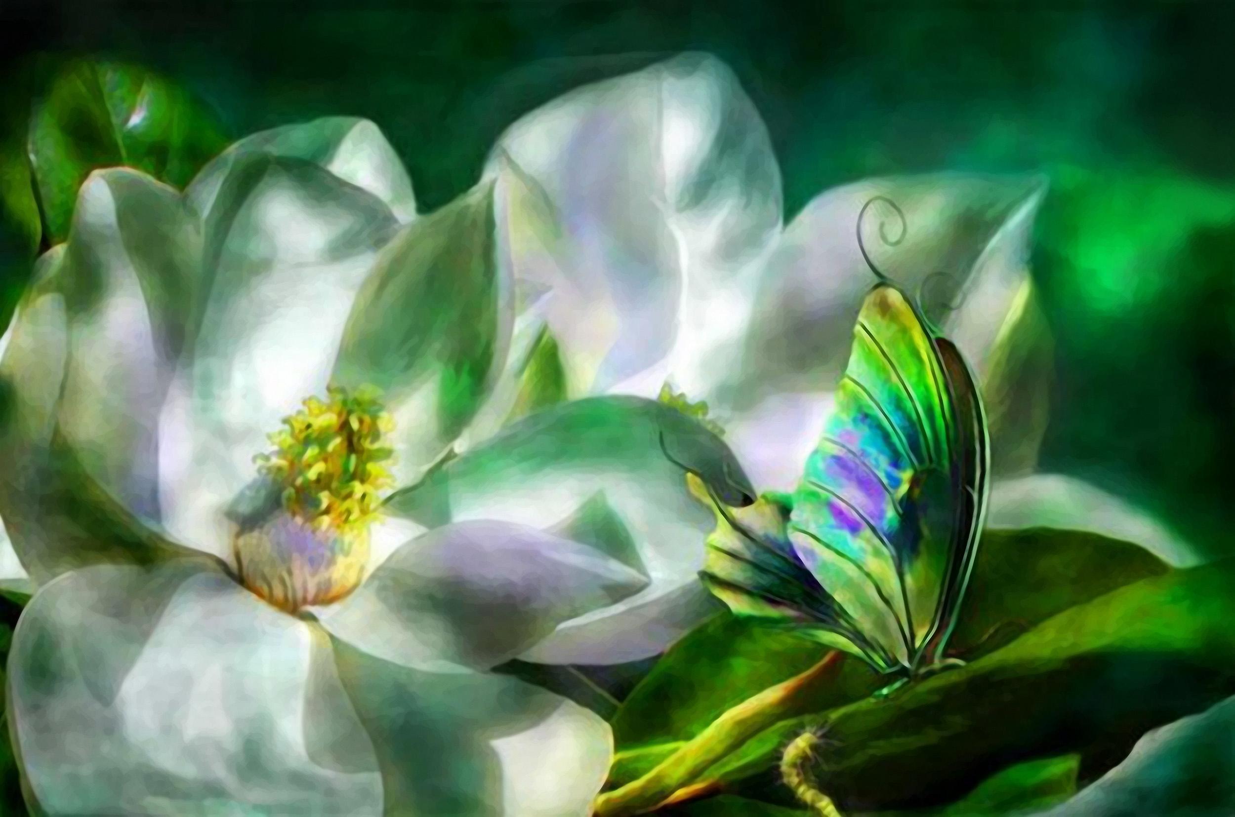 Картинки волшебный цветок
