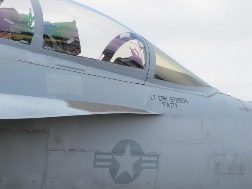 Американский палубный истребитель Boeing F-18F Super Hornet (98 фото)