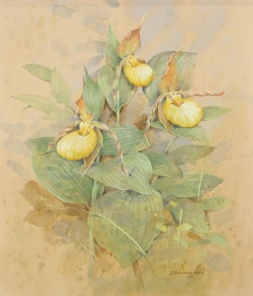 Британский художник Gordon Beningfield (1936 - 1998) (36 работ)
