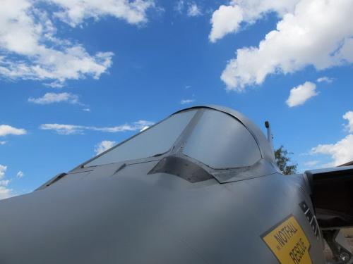 Европейский истребитель Tornado IDS (161 фото)