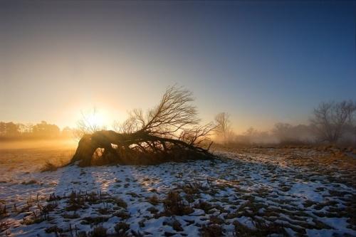 Пейзаж (45 фото)