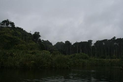 Фото экскурсия - Новая Зеландия: озера, реки, горы... (122 фото) (1 часть)