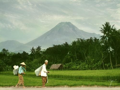 Фотограф-любитель, архитектор Tri Joko (Indonesia) (197 фото)