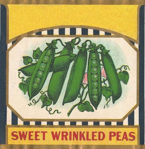 Vintage Labels and Posters (2547 работ) (2 часть)