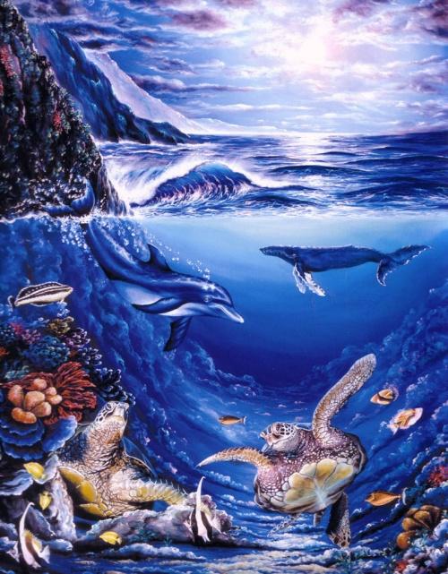 Морская жизнь на Гавайях - Belinda Leigh (72 работ)