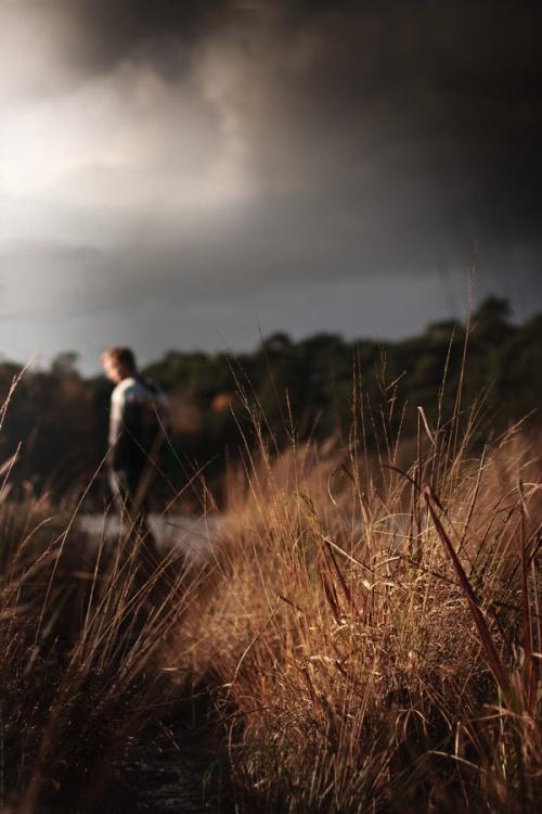 Photographer Maayke Klaver (61 фото)