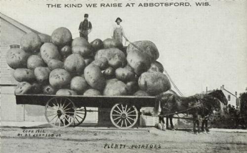 Ретро открытки-небылицы из США конца 19-го века (73 фото)