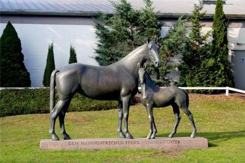 Памятник лошади (35 фото)