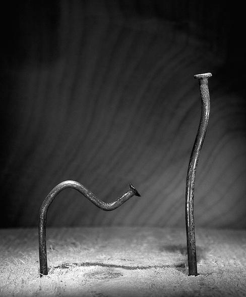 Жизнь замечательных гвоздей (27 фото)