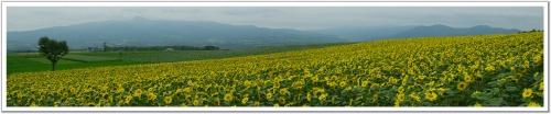 Панорамы природы HQ (50 фото)