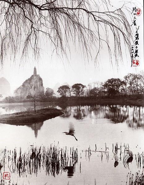 Культовый китайский фотограф Дон Хонг-Оай (41 работ)