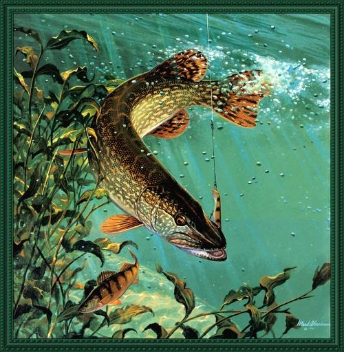 Рисунки на тему рыбалка (14 работ)