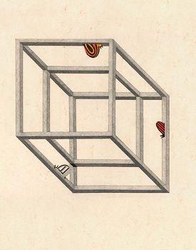 Интересные иллюзии (359 фото)