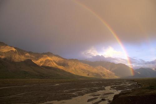 Фотографии радуги высокого качества (19 фото)