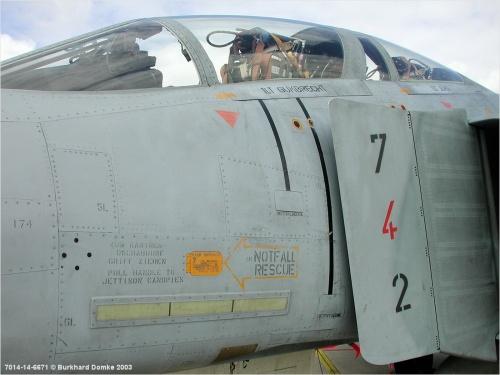 Американский истребитель F-4F ICE Luftwaffe (48 фото)