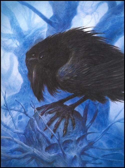 Канадский иллюстратор Джон Хоув (John Howe) (151 работ)
