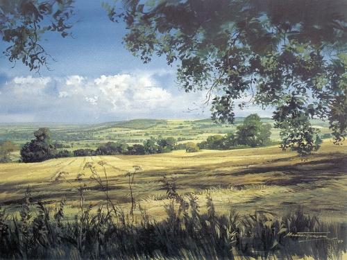 Английский реализм Майкла Тернера (Michael Turner) (162 работ)