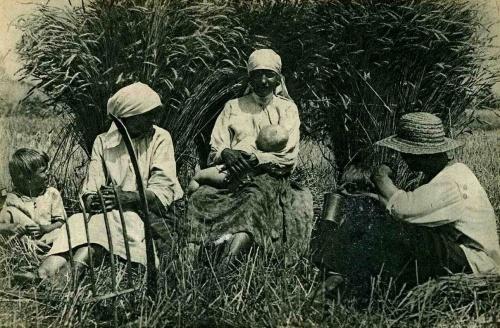 Союз Советских Социалистических Республик 1920-1929 годы (324 фото)