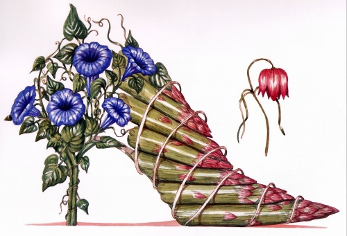 The Botanical Footwear of Dennis Kyte (45 работ)