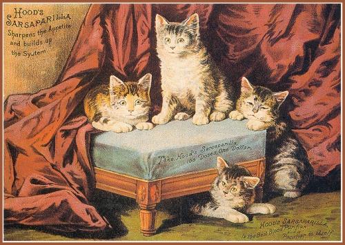 Кошки: старинные иллюстрации (23 работ)
