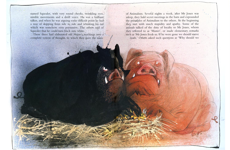 pst in pigs essay