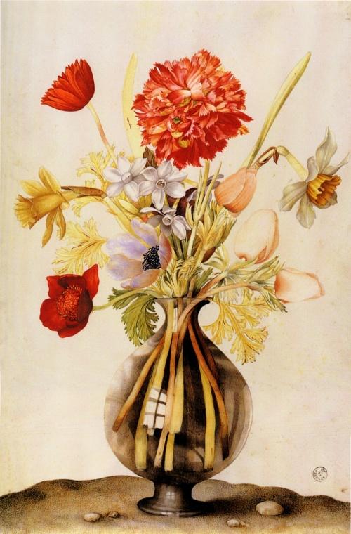 Натюрморты Джованни Гарзони - Giovanna Garzoni (15 работ)
