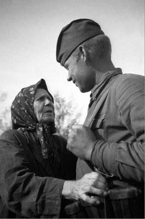 1941 1945 великая отечественная война в картинках 2