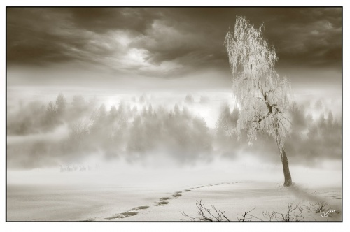 Художественная фотография - Igor Zenin (287 фото)