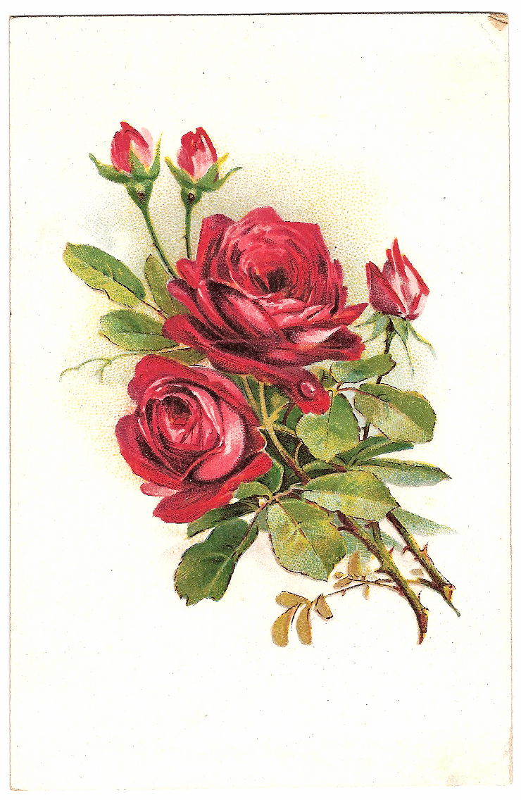Фото открыток цветов 131