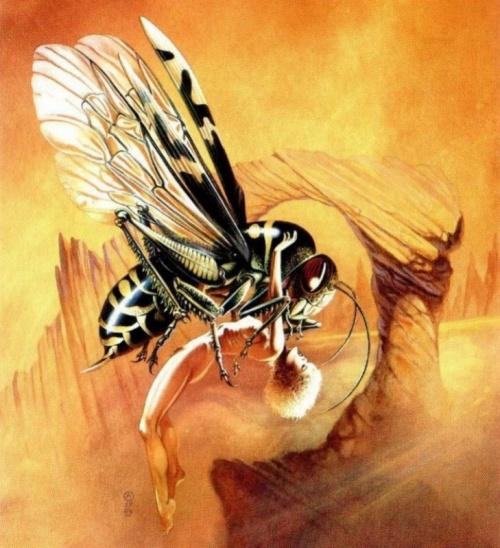 Fantasy Art Collection ( CHRIS ACHILLEOS ) vol.5 (182 работ)