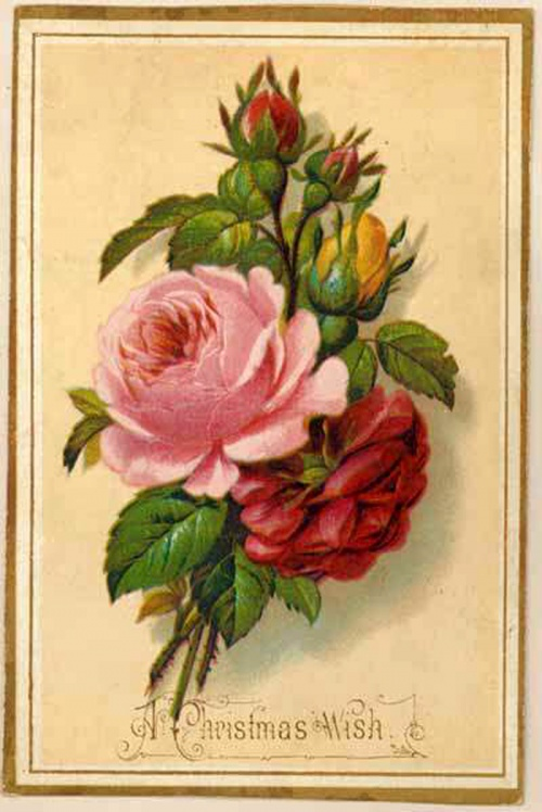 Рисуем открытку с цветами 208