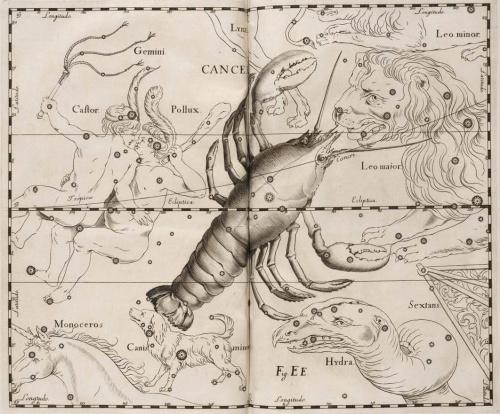 Атласы звездных карт. Ян Гевелий (56 работ)