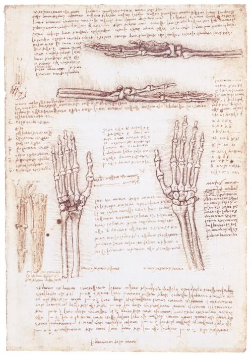 Коллекция работ (живопись, рисунки, эскизы, наброски) великого Леонардо да Винчи (1452-1519) (97 работ)
