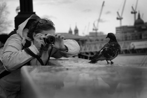 London - My Love (84 фото)