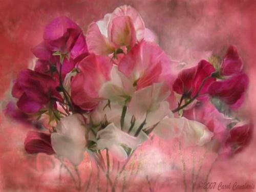 Цифровой художник Carol Cavalaris (118 работ)