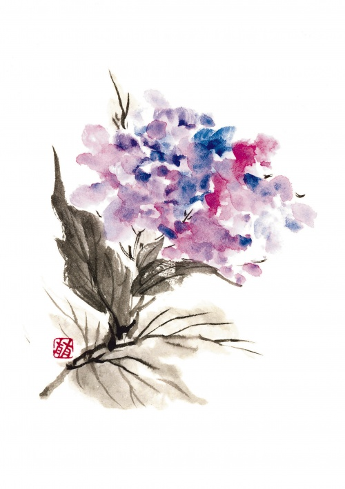 Японские акварели. Коллекция цветов от Рицуо Сугияма (45 работ) (1 часть)