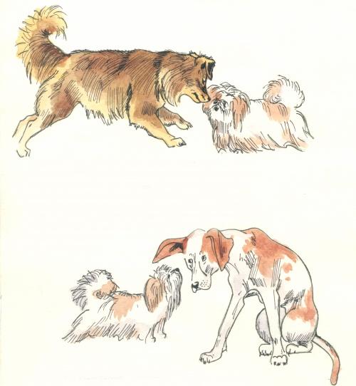 Футы-Нуты (29 работ) (2 часть)