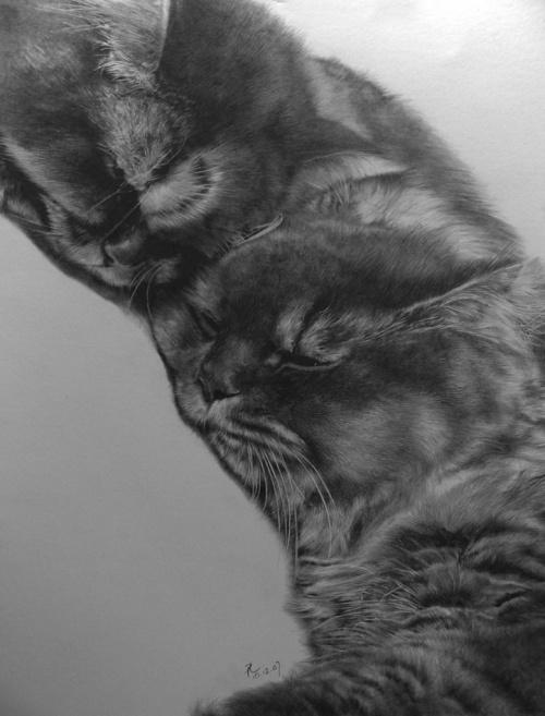 Кошачий калейдоскоп - 4 (93 работ)