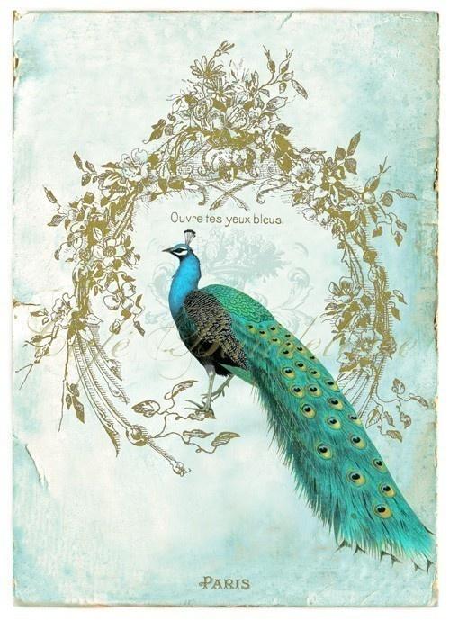 Cafe Baudelaire – коллекция романтических принтов (46 работ)