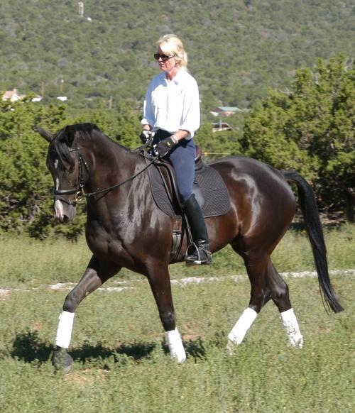 Лошадки (72 фото)