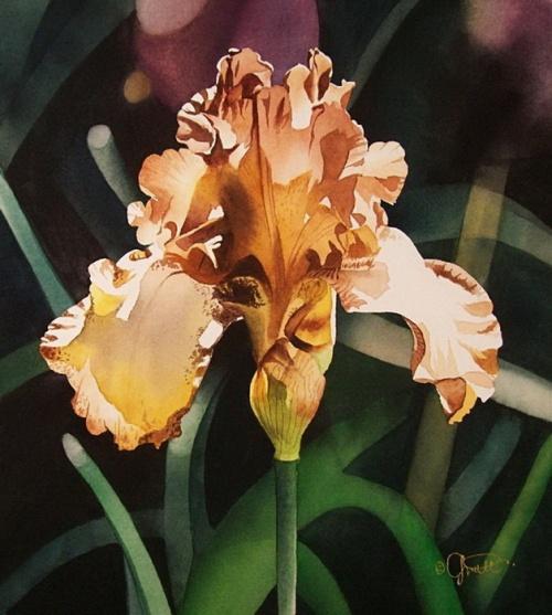 Цветы от Jacqueline Gnott (29 работ)