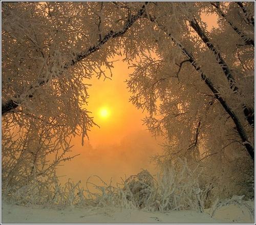 Фотограф Григорий Иващенко. Сказочная природа (130 фото)