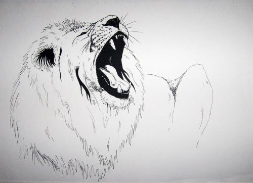 Рисунки животных (21 работ)